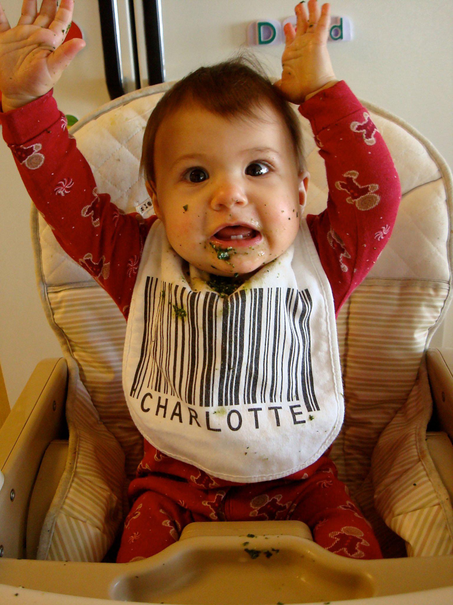Barcode Baby Bibs By Scott Blake